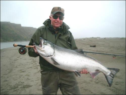 salmon13